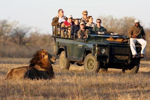 national park Kruger