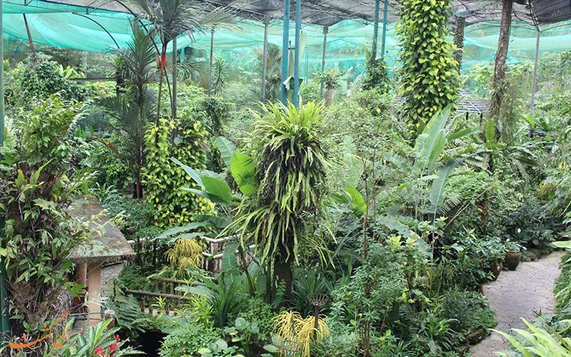 پارک پروانه کوالالامپور از جاذبه های گردشگری کوالالامپور