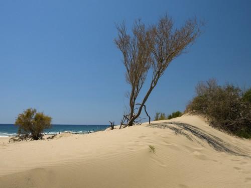 Dunes of Patara