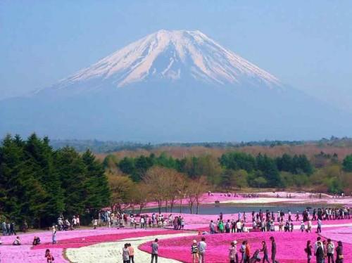 [عکس: unique-festivals-around-the-world-fuji-s...00x374.jpg]