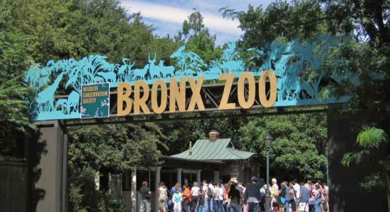 بزرگترین باغ وحش ها