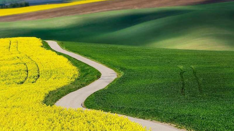 زمین های Moravian - جمهوری چک 
