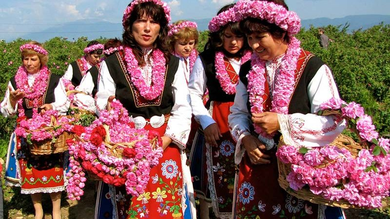 فستیوال گل رز در بلغارستان