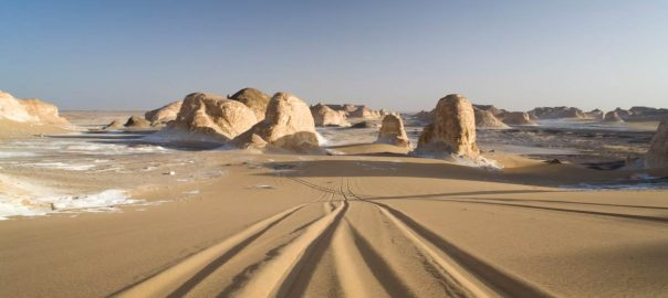 White-Desert-Vacations