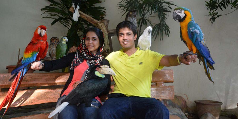 باغ پرندگان مالزی