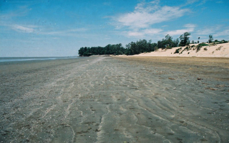Hide and Seek, Chandipur Beach, Orissa
