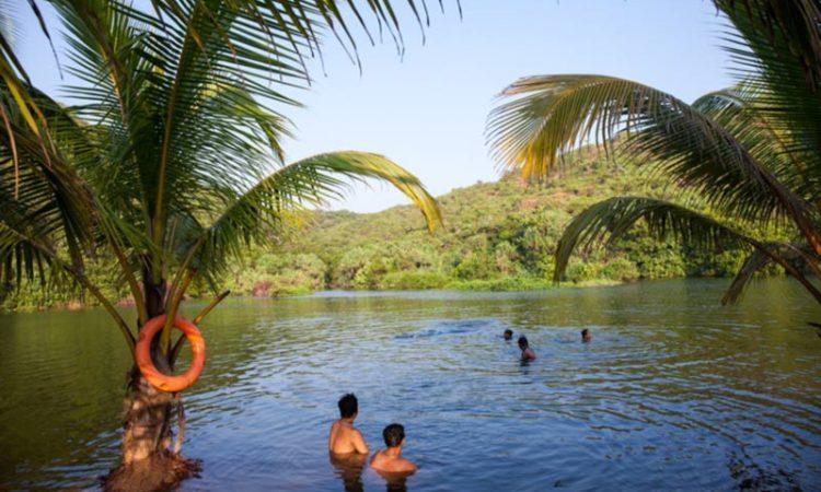 شنا در آب های شیرین دریاچه