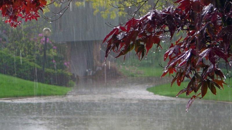 Red Rain, Kerala