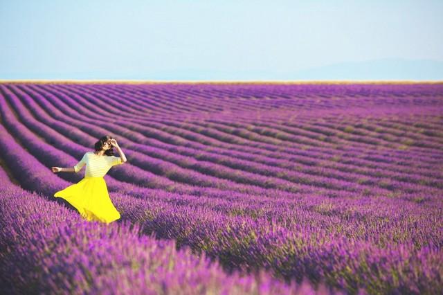 breathe-in-the-lavender