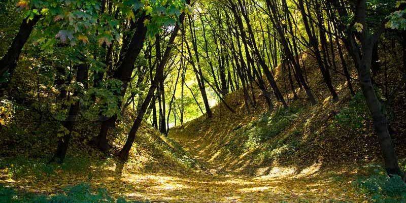 kolomenskoye-park-in-moscow-