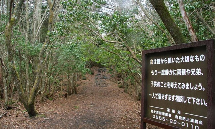 جنگل خودکشی