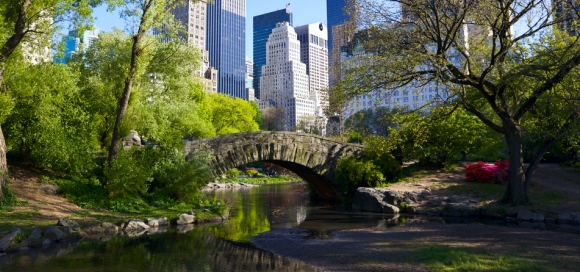 newyork 3