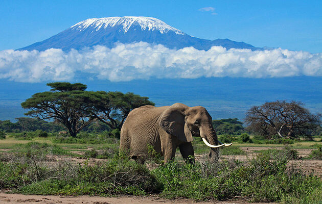 africa-best-game-reserves-amboseli