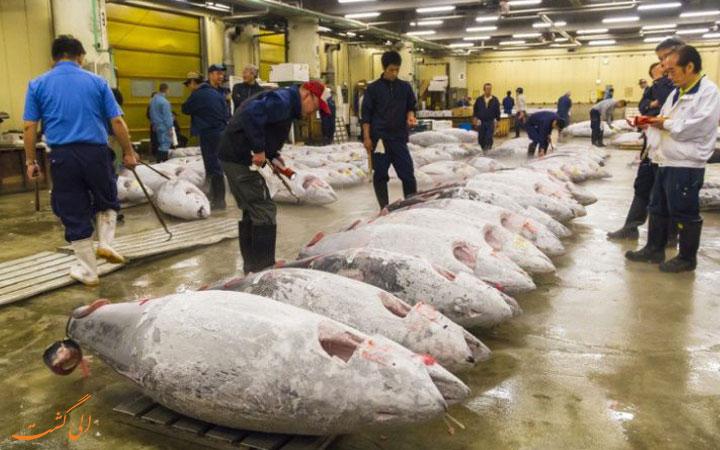 بازار ماهی فروشان سوکیجی