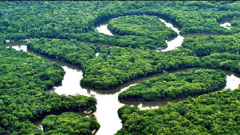 راز شهر پنهان شده در اعماق جنگل های آمازون upcargo