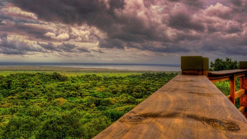 پارک ملی isimangaliso wetland در آفریقای جنوبی
