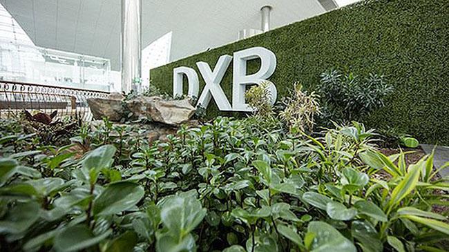 zen garden at dubai airport