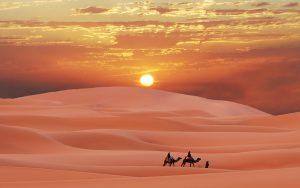 صحرای آفریقا
