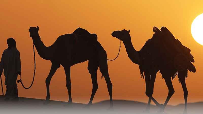 فرهنگ دبی