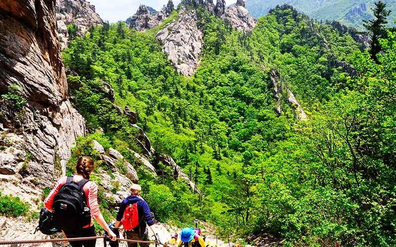 گردش و کوهنوردی در سئول