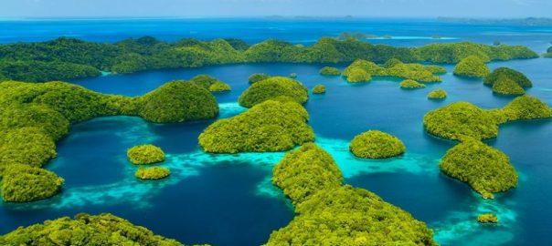 پالائو طبیعت جزیره
