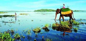 سفر به سریللانکا