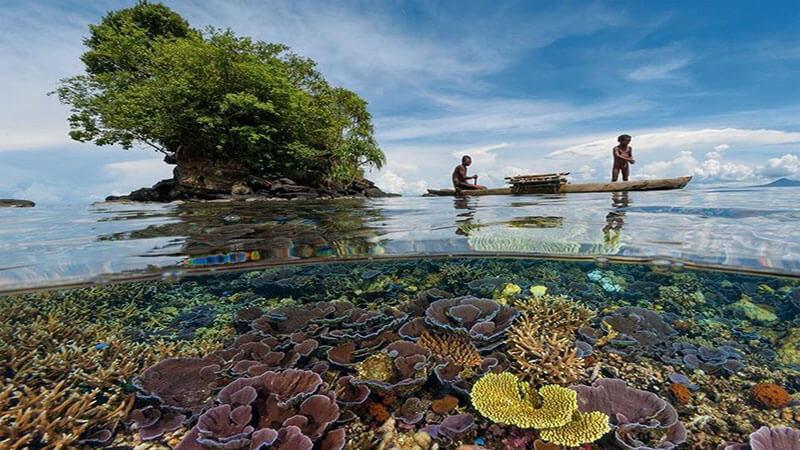 طبیعت پاپوآ گینه نو