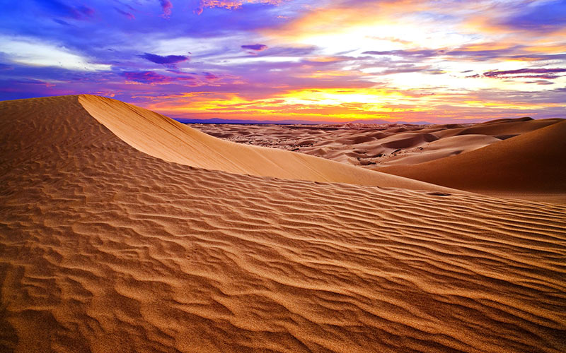 صحرای گُبی