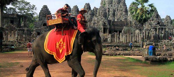 فیل سواری   تایلند