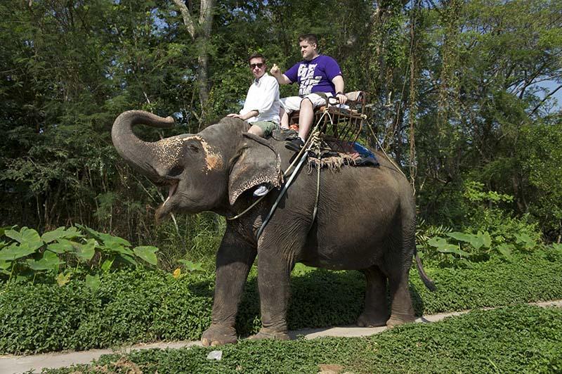 دستورات پا برای فیل سواری   تایلند