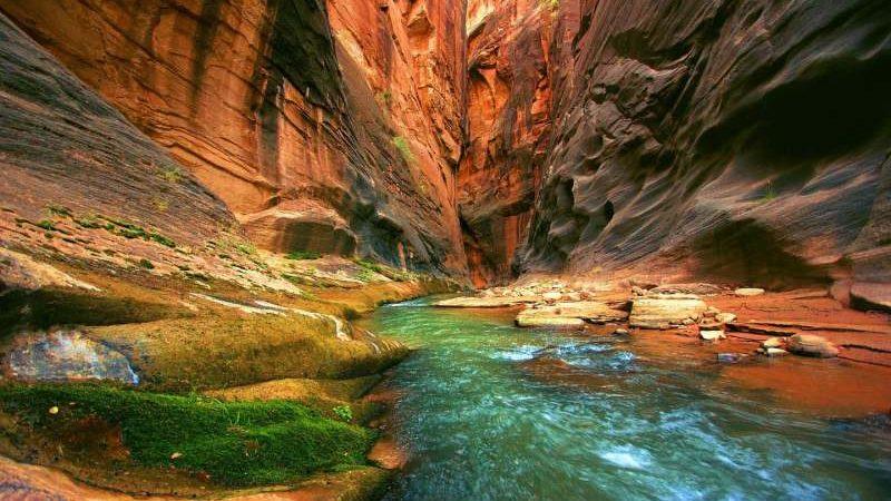 پارک ملی صهیون
