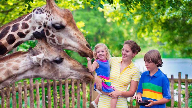 باغ وحش آنتالیا | تور آنتالیا