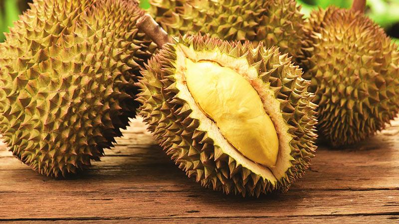 میوه های عجیب تایلند