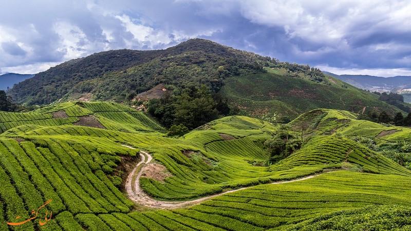 بهترین زمان سفر به مالزی
