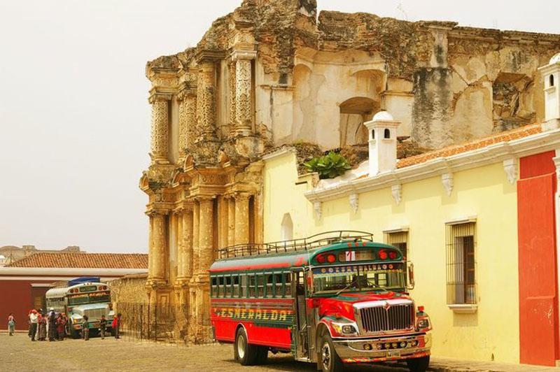 اتوبوس مرغی پاناما