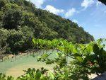 همه چیز درباره پارک ملی پنانگ در مالزی