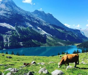 دریاچه سوئیس