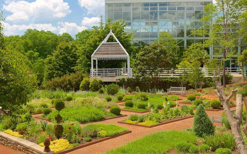 باغ گیاه شناسی سرسبز
