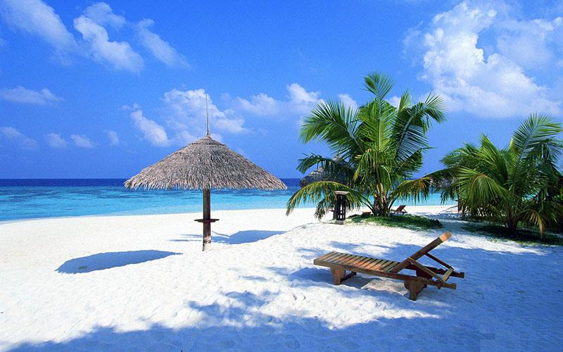 ساحل رویایی گوا