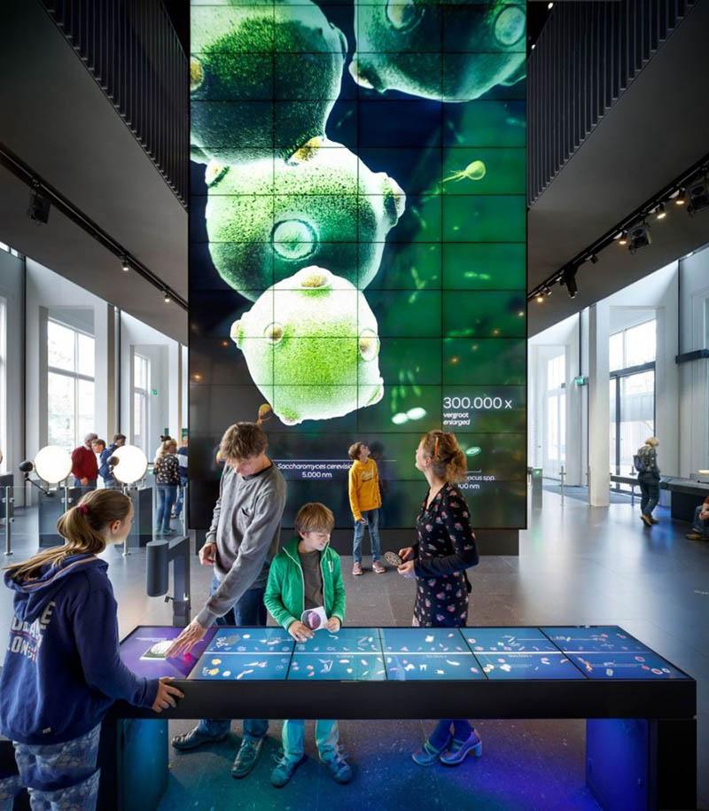 موزه میکروب در امستردام