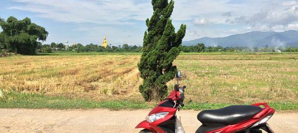 کرایه موتور در تایلند