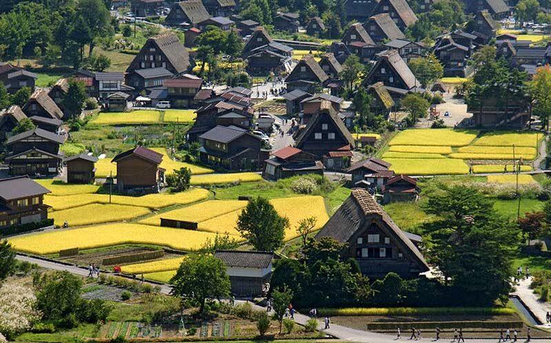 روستای تاریخی شیراکاوا گو در تابستان