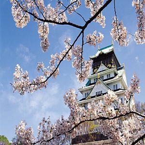 فصل بهار در ژاپن