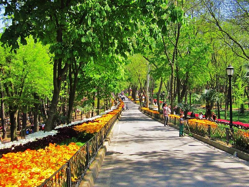 مسیر پیاده روی پارک امیرگان استانبول