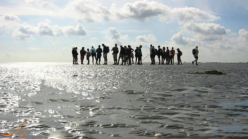 دریای وادن