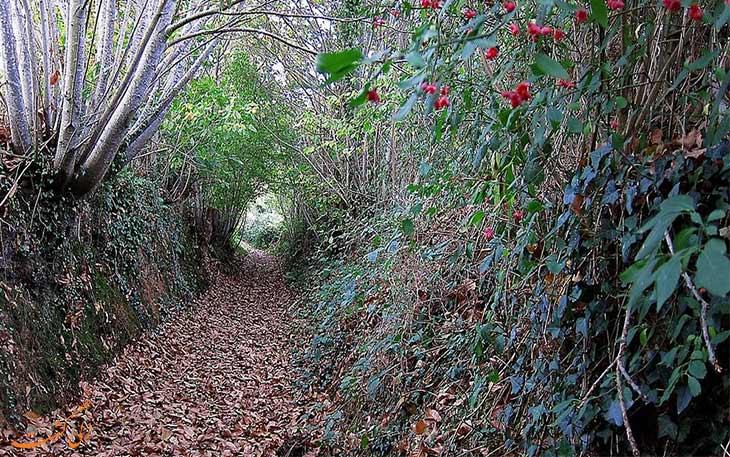 تونل های طبیعی اروپا