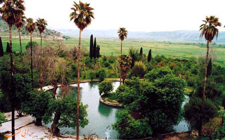 باغ بلقیس