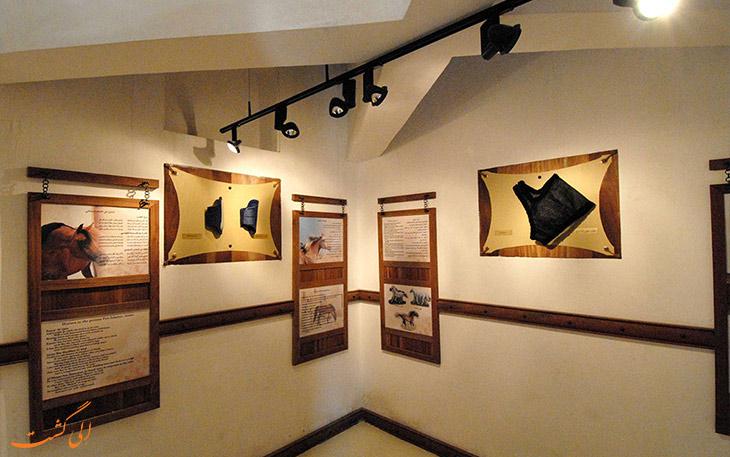 اتاق های موزه اسب
