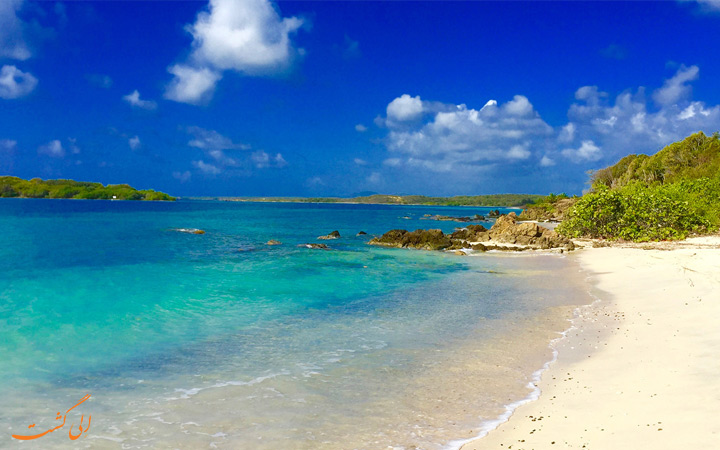 جزیره ویکس