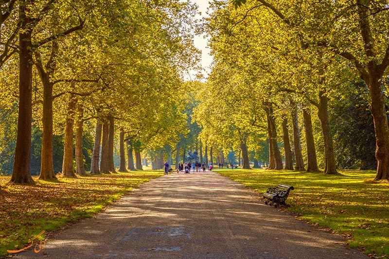 پارک هاید لندن